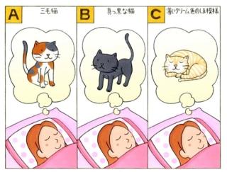 【心理テスト】夢の中に1匹の猫が出てきました。その猫はどんな柄だった?