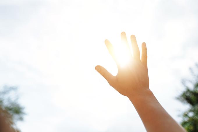 日差しにかざした手