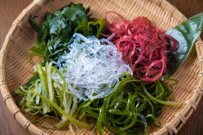 海藻類画像