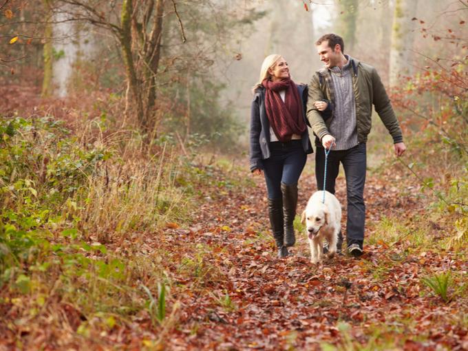 犬を散歩させるカップル