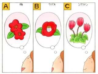 【心理テスト】あなたを花にたとえるとしたら、次のうちどれ?