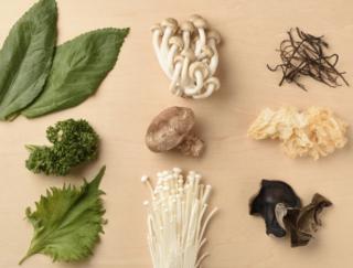 食物繊維を含む食べ物は?野菜だとあの加工品やきのこがすごい!