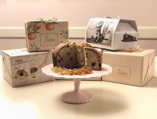 イタリアの伝統菓子「パネットーネ」が今アツい! 老舗がフォーブス・イタリア誌の優良企業100社に!