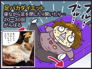 足パカを邪魔する猫