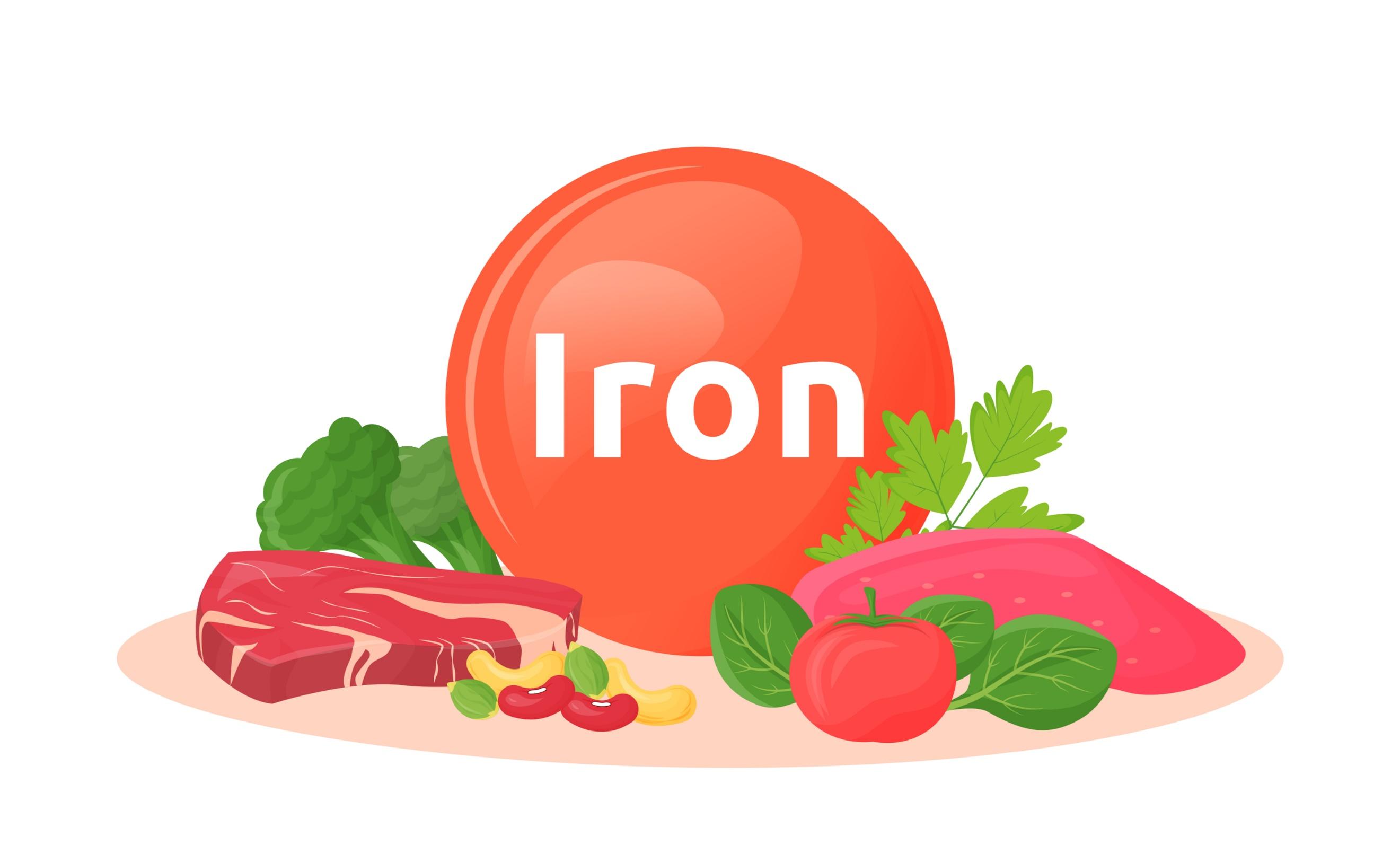 鉄を含む食材のイラスト