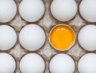 卵1個と同じくらいのカロリーの食材は?~ダイエットに役立つ栄養クイズ~
