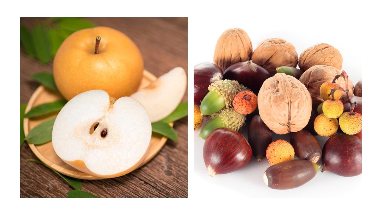 果物と種実の画像