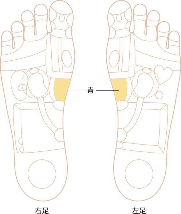 胃の反射区画像