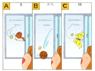 窓から飛び込んできた鳥、ボール、蝶のイラスト