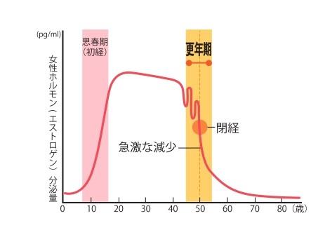 ホルモン分泌グラフ画像