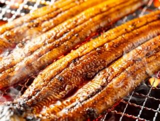 ぶり、さんま、さけ、あゆ。この中でウナギと同じくらいのカロリーがある魚はどれだと思う?~ダイエットに役立つ栄養クイズ~