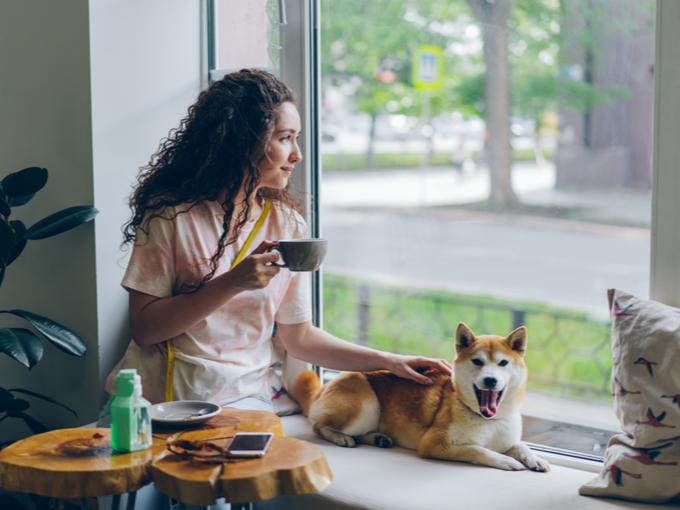 ペットの犬をなでながらお茶を飲む女性