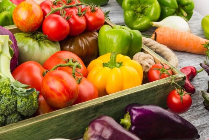 夏野菜画像