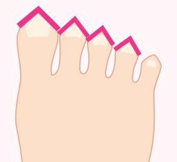 三角の足の指イラスト画像