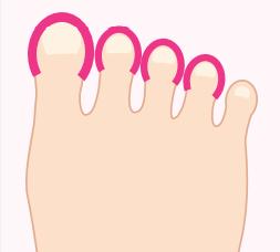 楕円の足の指イラスト画像