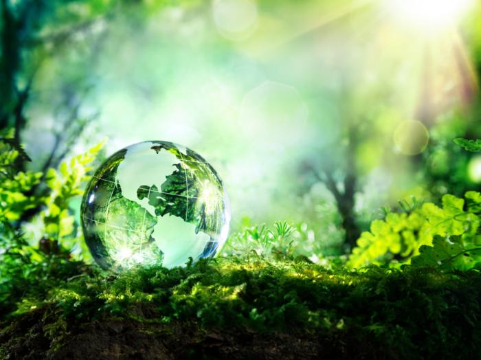 緑地に水晶球の画像