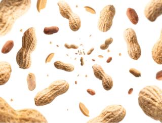 がんになったらピーナッツに注意? 海外研究が食べ過ぎを懸念する理由は…?