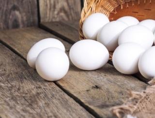 少しでも卵の鮮度を保つには、冷蔵庫のどこに置くのが正解?~ダイエットに役立つ栄養クイズ~