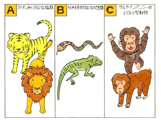 動物のイラスト