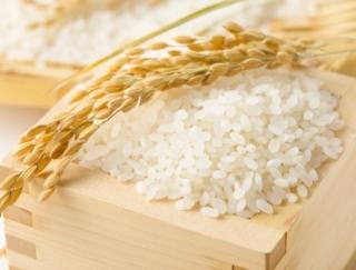 新米をおいしく炊くためのポイントは?~ダイエットに役立つ栄養クイズ~